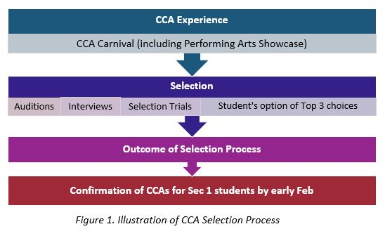 CCA Selection Process.jpg